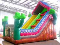 Indoor Inflatable House Slide