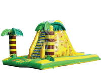 Hot Sale 2 In 1 Inflatable Rock Climbing Slide for Kids