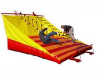Commercial Grade Inflatale Jacob