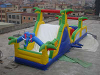 Unique Inflatable Snake Head Obstacle Course