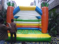 Inflatable Carrots Jumping Bounce House Moonwalk