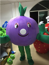 Blue berry mascot costume