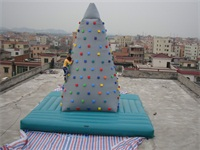 Commercial Grade New Arrival Inflatable Climbing Wall for Sale