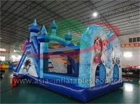 Inflatable Princess Bouncer Combo For Event