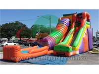 Fun Inflatable Tunnel Water Slide