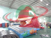 Inflatable Big Red Fish Slide