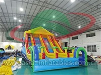 Inflatable Double Lane Slide With Palm Tree