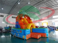 Indoor Amusement Inflatable Slide