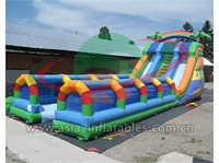 Tropical Dual Lane Water Slide With Slip N Slide