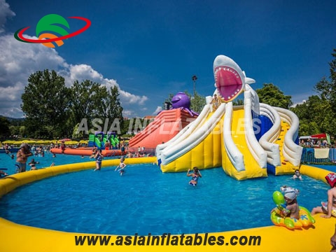 Hot Sales Amusing Inflatable Water Park with Shark Slide