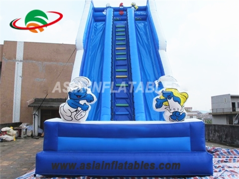 Blue Cartoon Theme Inflatable Water Slide With Double Lane